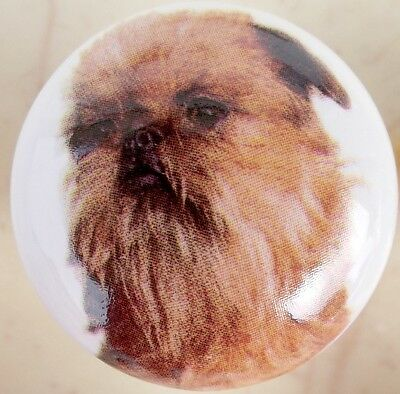 Cabinet Knob Brussels Griffon DOG knobs 229 Bruxellois