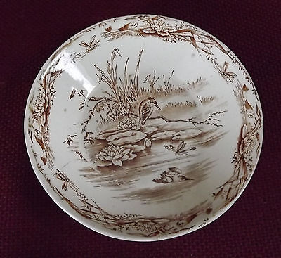 Antique James Beech Butter Pat, Rare Aesthetic Brown Osborne Pattern England