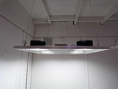 Cree CXB3590 LED QUAD COB Grow Light with Hanging Kit
