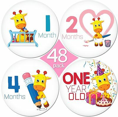 """LIMITED PROMO 48 Pack of 4"""" Premium Baby Monthly Stickers By KiddosArt. 1 Lilly"""