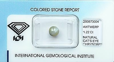 Chrysobéryl Oeil de chat - 1.22 ct - Natural Cat's eye Chrysoberyl certified IGI