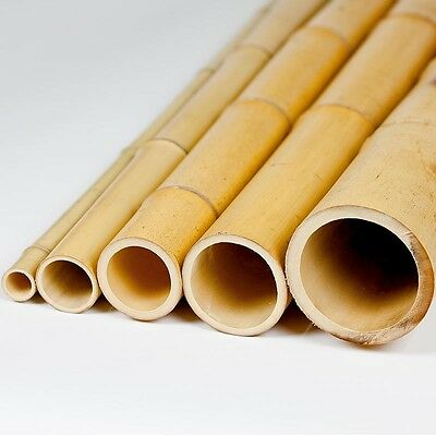 "5' BAMBOO POLES Lot NATURAL 1"", 2"", 3"", 4"", 5"" Commercial Grade Tiki Bar"