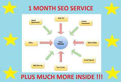 *** 1 Month Complete Website SEO Service Tier Backlinks PR Google SERPS Rank ***