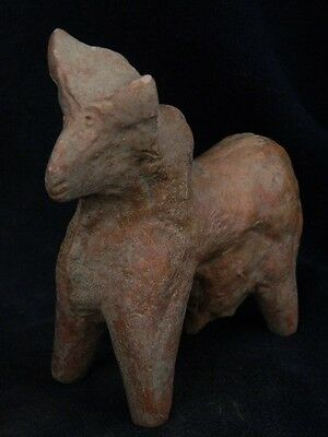 Ancient Large Size Teracotta Bull Indus Valley 800 BC  #TR583