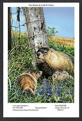 Pa Penna Game Commission WTFW 2015 Groundhog Lithograph Print Card