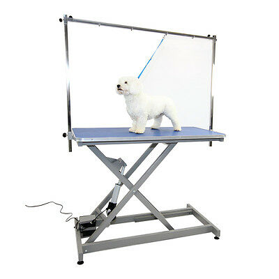 Burtons Electric Inclined-strut Grooming Table with Standard Feet