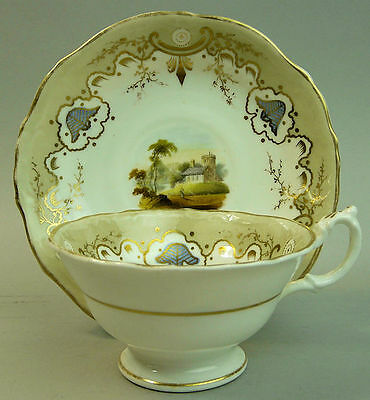 Antique Yates Hand Painted Porcelain Cabinet Cup And Saucer Patt. No. 237 C.1830