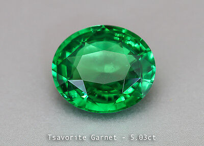 Shiny medium Chrome Green Tsavorite - Oval 5.03ct - Tanzania