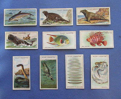 Vintage 1929 Wonders of the Seas Tobacco Cards by Wills
