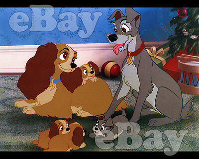 Rare! WALT DISNEY'S LADY AND THE TRAMP Cartoon Color 8 X 10 Photo #7 PUPPIES