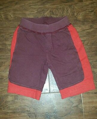 boy's Tea Collection brand shorts maroon and red size 5