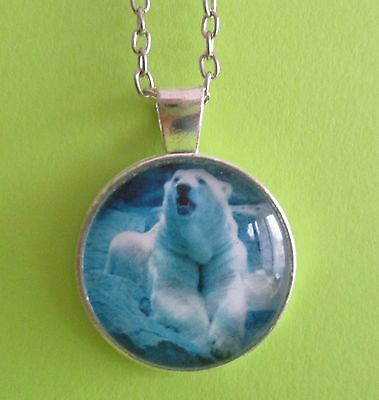 Polar Bear Blue  Medallion Necklace  Brand New  Free Shipping Pb04