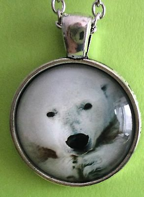 Polar Bear Medallion Necklace  Brand New  Free Shipping Pb03