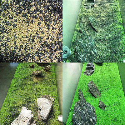 Aquarium Grass Seed Aquatic Mini Leaf Carpet Water Plant Fish Tank Decor FR