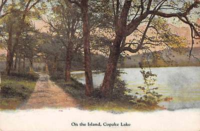 Copake Lake New York On the Island Scenic View Antique Postcard J63336