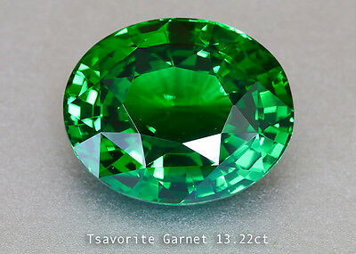 Brilliant Chrome Green Tsavorite Garnet - Oval 13.22ct - Tanzania