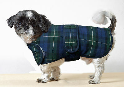 Cosipet Traditional Blue Tartan Dog Coat made in the UK