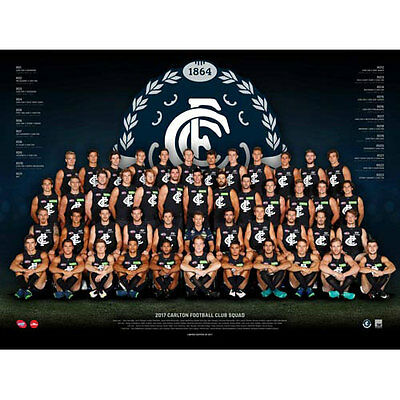 AFL 2017 Team Carlton Blues POSTER 60x80cm NEW Aussie Football League Players