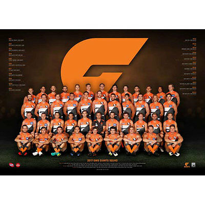AFL 2017 Team GWS Greater Western Sydney Giants POSTER 60x80cm NEW Aussie Rules