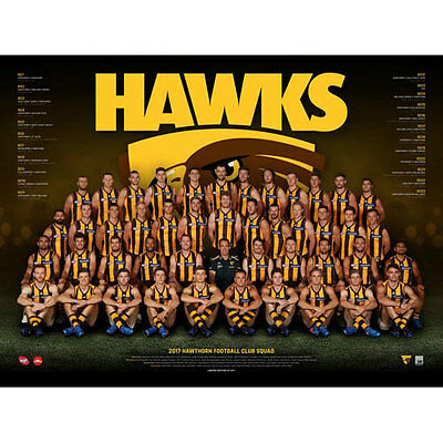 AFL 2017 Team Hawthorn Hawks POSTER 60x80cm NEW Aussie Football League Players