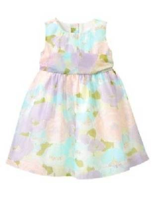 EUC Gymboree TEA & CAKE PARTY Floral Organza Easter Dress 12 18 M