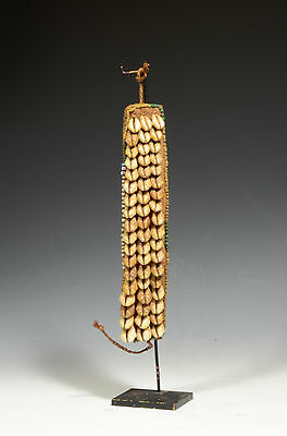 Antique Papa New Guinea Cowrie Trade Bead Necklace