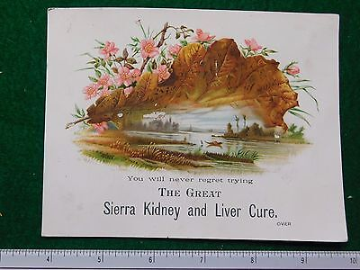 1870s-80s Sierra Chemical Co Kidney & Liver Cure Pond Victorian Trade Card #R