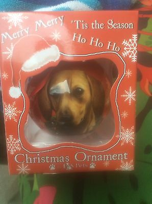 Cute Red Christmas Dachshund  Tree Ornament New In Box Deal!