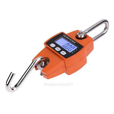Mini Portable Crane Scale LCD Digital Hanging Weight 300kg Heavy Duty Industrial