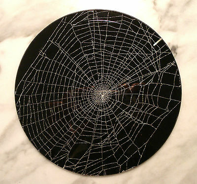 Genuine Preserved FEATHER FOOT Spider WEB under Bevel Glass by EMIL FIORE
