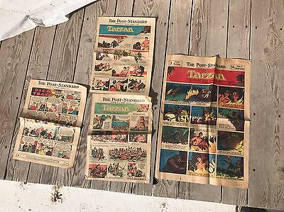 Vintage Tarzan 1930s Newspaper Color Comic Strip Syracuse Post Standard D Tracy
