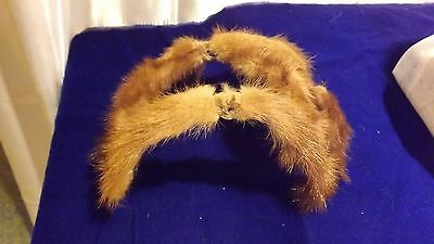 Vintage 1950's Fur Ladies Hat
