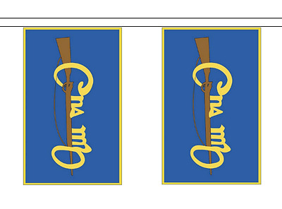 Ireland Cumann na mBan Polyester Bunting - 6m long with 20 Flags