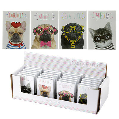 Cute Cat & Dog Magnets - Pugs - French Bulldog - Cats - Fridge - Magnet - New