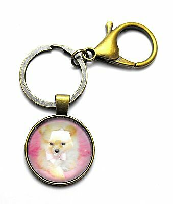 Darling Pomeranian Pink Bows Cabochon Charm Key Ring Chain Lobster Clip Clasp b