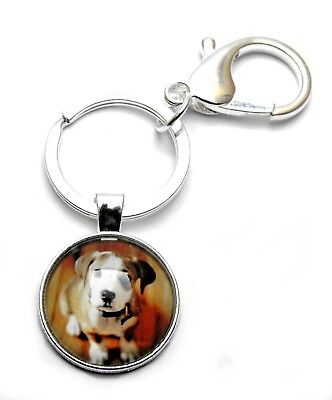 Darling Beagle Dog Cabochon Charm Key Ring Chain with Lobster Clip Clasp