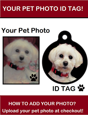 """YOUR PET PHOTO"" Pet Dog Cat ID Tag or Keychain Personalized Pet Lovers Gift"