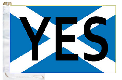 Scotland Independence Referendum Vote 'YES' Courtesy Boat Flag Roped & Toggled
