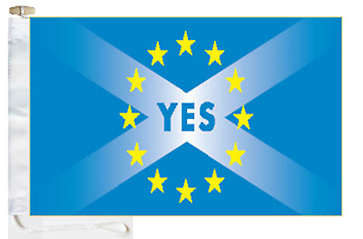 Scotland EU Membership 'YES' Courtesy Boat Flag Roped & Toggled