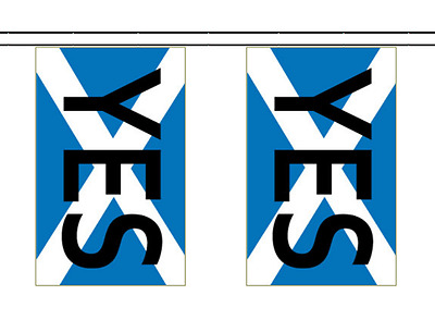 Scotland Independence Referendum Vote YES' Polyester Bunting - 5m with 14 Flags