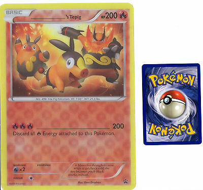 Pokemon _____'s Tepig 2011 Jumbo Oversized Promo  3D Holographic Card