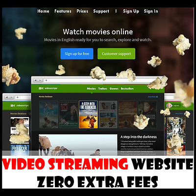 Website - Movie Streaming - Fully Built - Home Online Based Business - For Sale