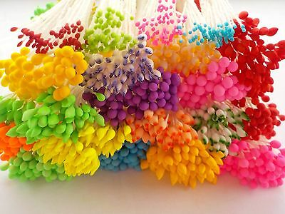1000++ Double Headed Flower Stamen Pollen - Florestry Crafts Colour Mix @ £2.99