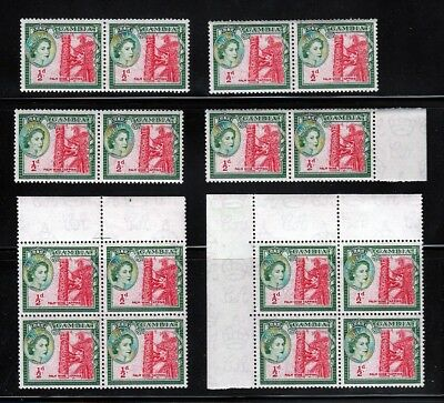 1953 older Gambia MNH Sc 153 Wmk Queen, Palm - Wholesale, 2 x blocks, pairs