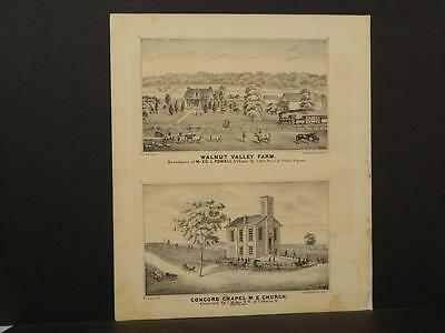Ohio Champaign County Map Walnut Valley 1874 Double /Side  Q4#26