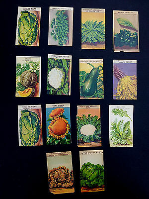 14 DIFFERENT antique vintage French Vegetable SEED labels
