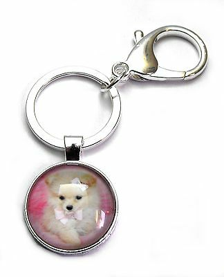 Darling Pomeranian Pink Bows Cabochon Charm Key Ring Chain Lobster Clip Clasp s