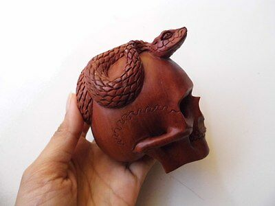 Skull Skeleton Head with Snake Cobra From Wood Carving_w542