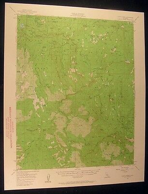 Giant Forest California Poop Out Pass 1961 vintage USGS original Topo chart map