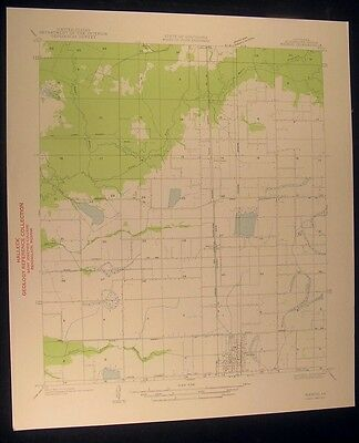 Mamou Louisiana Gray Pt. Manwell Gully 1935 vintage USGS original Topo chart map